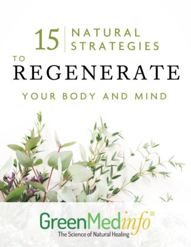 15 Natural Strategies to Regenerate Your Body and Mind eBook