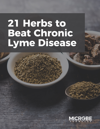 21 Herbs to Beat Chronic Lyme Disease eBook
