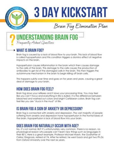 3-Day Kickstart Brain Fog Elimination eGuide