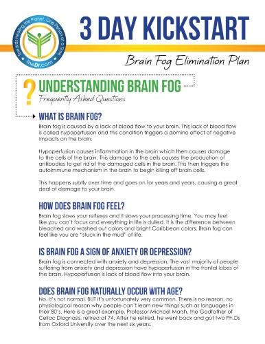 3-Day Kickstart Brain Fog Elimination Plan eGuide