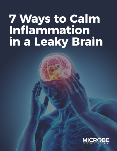 The Essential Guide to Calming Lyme-Induced Inflammation eGuide