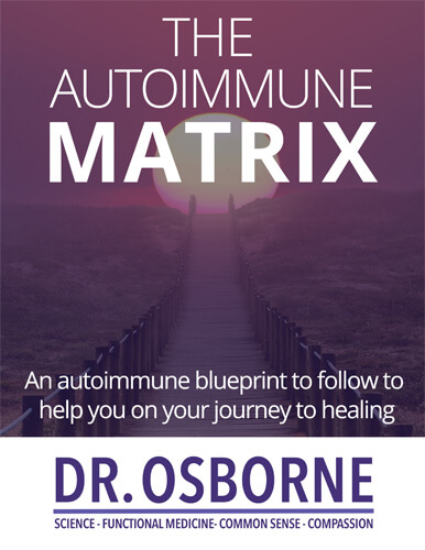Autoimmune Recovery: Putting the Puzzle Pieces Together Interview + Autoimmune Matrix eBook