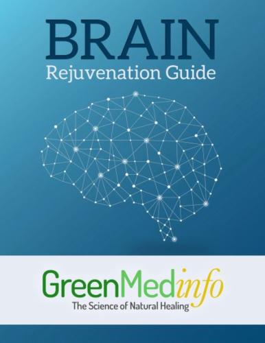Brain Rejuvenation eGuide