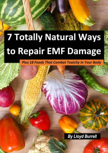 7 Totally Natural Ways to Repair EMF Damage eBook