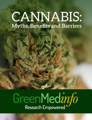 Cannabis: Myths, Benefits and Barriers eBook