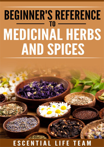 Beginner's Reference to Medicinal Herbs & Spices eBook