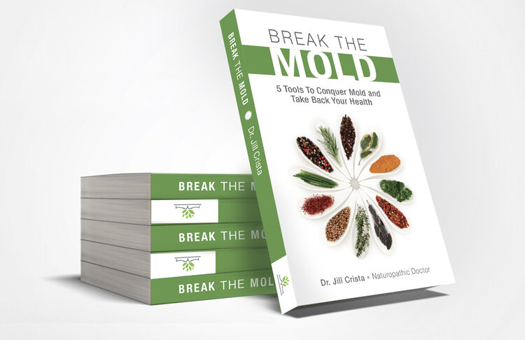 Break The Mold eBook, The Complete First Section