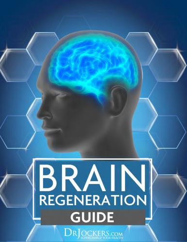 The Brain Regeneration eGuide