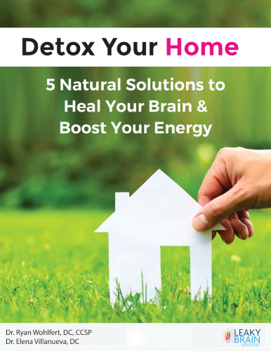 Detox Your Home: 5 Natural Solutions to Heal Your Brain & Boost Your Energy eBook