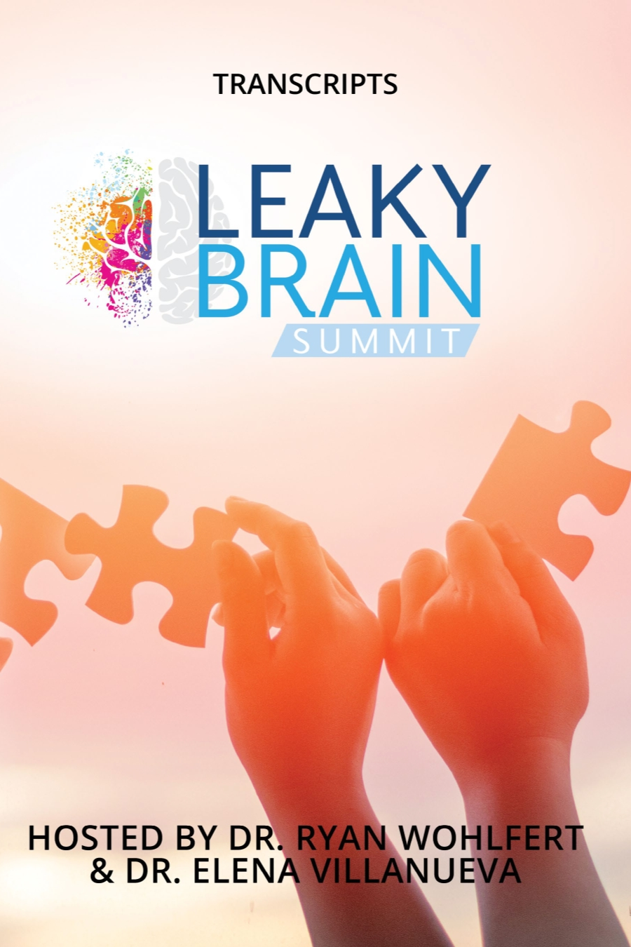 Leaky Brain Summit Interview Transcripts eBook (PDF)