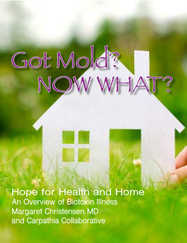 Got Mold, Now What? eBook