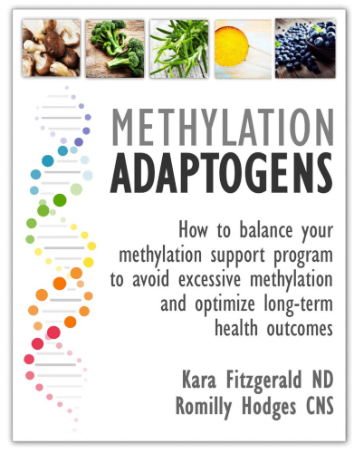 Methylation Adaptogens eGuide