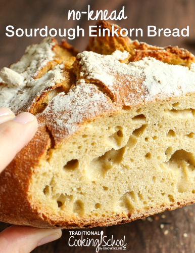 No-Knead Einkorn Sourdough Bread Recipe eGuide