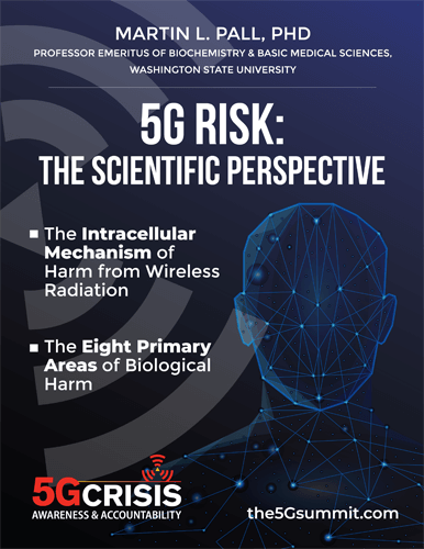 5G Risk: The Scientific Perspective eBook