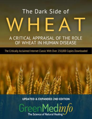 The Dark Side of Wheat Essays