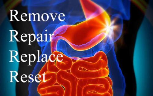 NeuroMetabolic Gut Repair Program